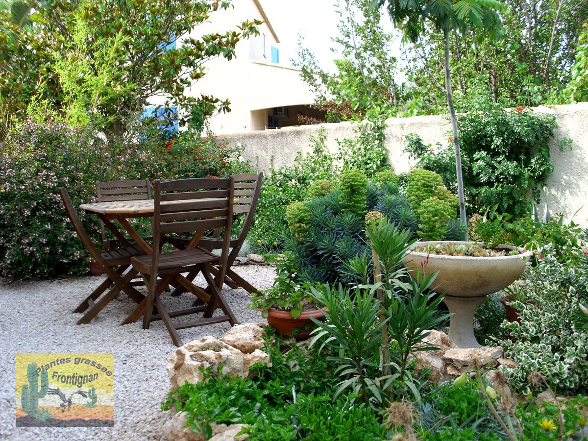Plante Méditerranéenne Sans Arrosage creation jardin mediterraneen