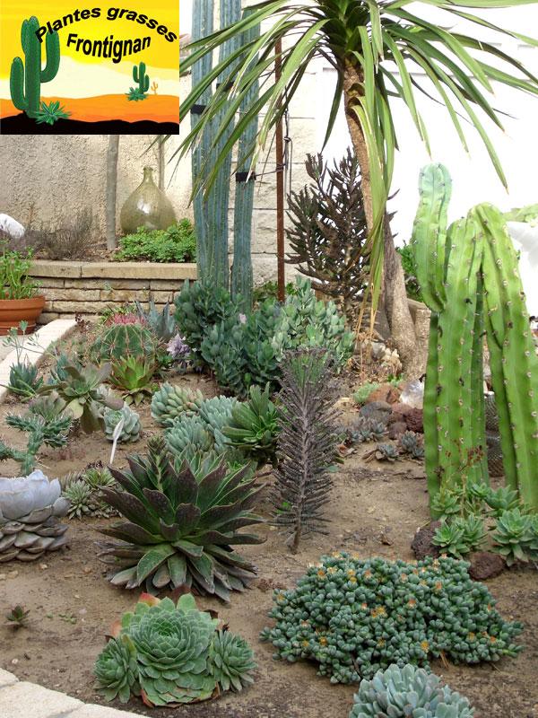 Rocaille mediterran enne - Arrosage plantes grasses ...